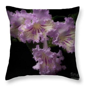 Streptocarpus 'renia' Throw Pillow