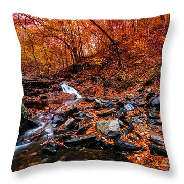 Throw Pillow featuring the photograph Stress Relief by Edward Kreis