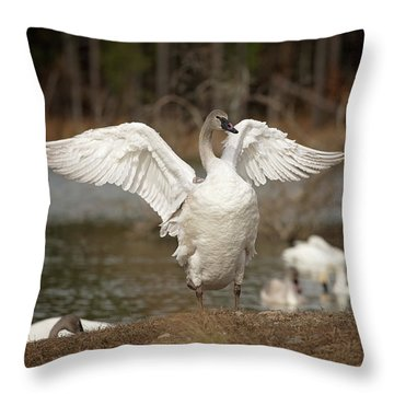 Stretch Your Wings Throw Pillow