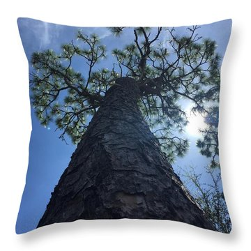 Stretching At Eagle Lake Park Throw Pillow
