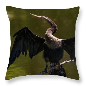 Throw Pillow featuring the photograph Strike A Pose by DJA Images