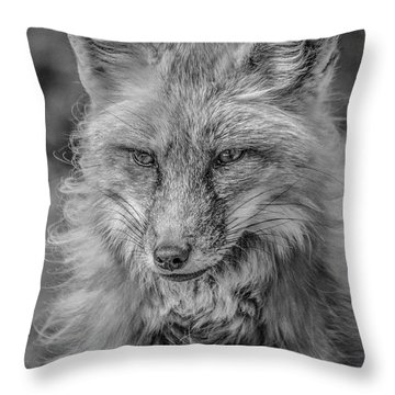 Striking A Pose Black And White Throw Pillow