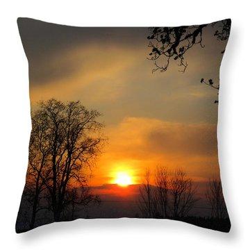 Striking Beauty Throw Pillow