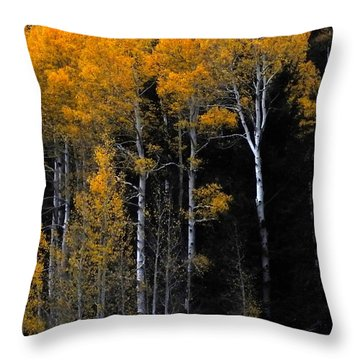Striking Gold Throw Pillow