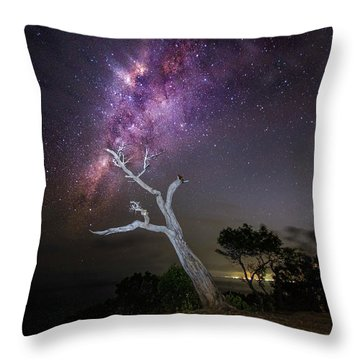 Throw Pillow featuring the photograph Striking Milkyway Over A Lone Tree by Pradeep Raja Prints