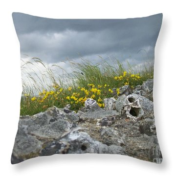 Striking Ruins Throw Pillow by Mary Mikawoz