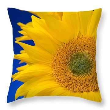 Striking Sunflowers Throw Pillow