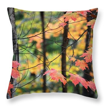 Stringing Up The Colors Throw Pillow