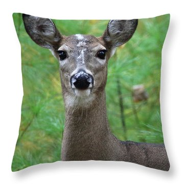 Stripe Faced Doe Throw Pillow