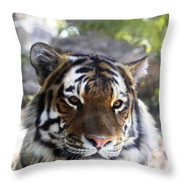 Striped Beauty Throw Pillow by Marilyn Hunt