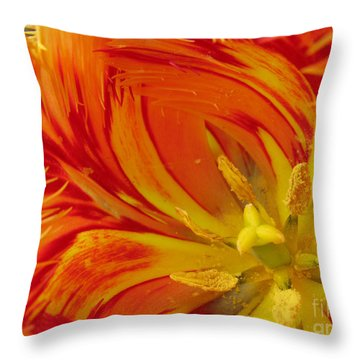 Striped Parrot Tulips. Olympic Flame Throw Pillow
