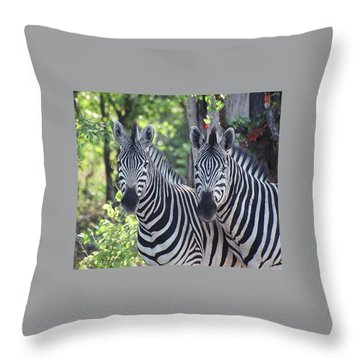 Stripes And Ovals Throw Pillow