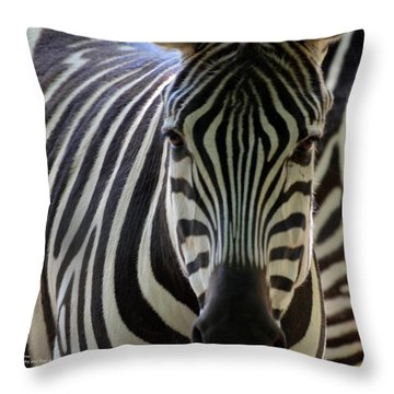 Stripes Throw Pillow by Maria Urso