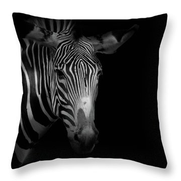 Stripes Number 5 Throw Pillow