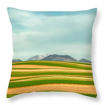 Stripes Of Crops Throw Pillow