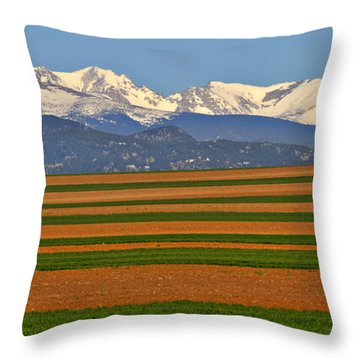 Stripped Fields And Balloon Throw Pillow by Scott Mahon