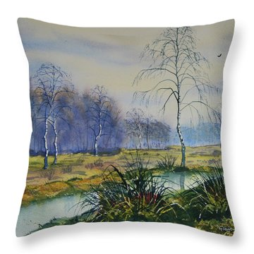 Stream In Flood On Strensall Common Throw Pillow