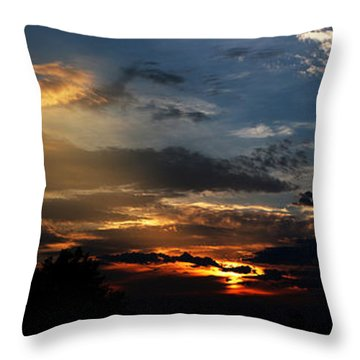 Struggling Sun Throw Pillow by James F Towne