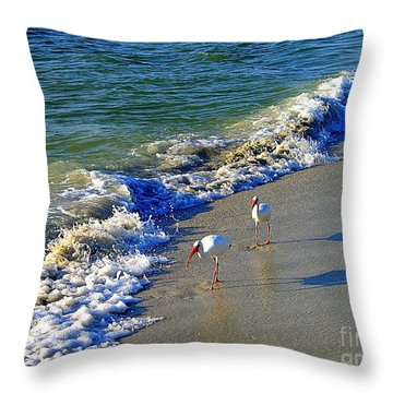 Throw Pillow featuring the photograph Strutting Shadows - White Ibis Strutting On The Beach by Shelia Kempf