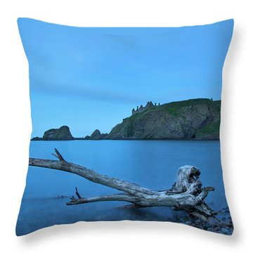 Stuck In Time Throw Pillow