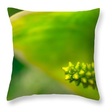 Studs And Curl Throw Pillow