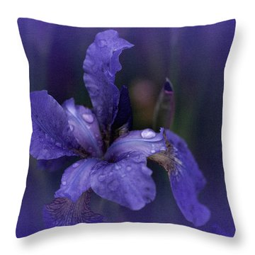 Study In Blue Throw Pillow