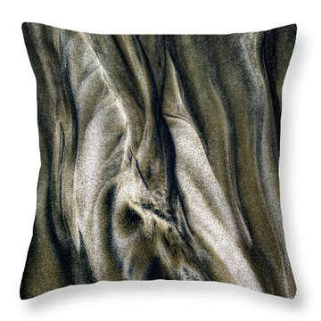 Throw Pillow featuring the photograph Study In Brown Abstract Sands by Rikk Flohr