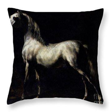 Study Of A Dapple Grey Throw Pillow