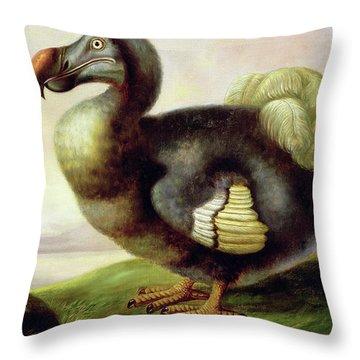 Study Of A Dodo Throw Pillow
