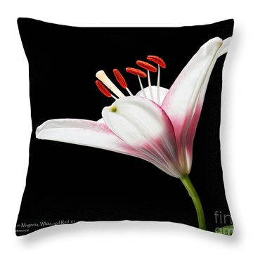 Study Of A Lily In Magenta, White, And Red #2 By Flower Photographer David Perry Lawrence And Red #1 Throw Pillow by David Perry Lawrence