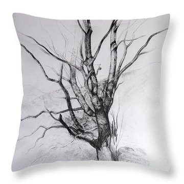 Study Of A Tree Throw Pillow