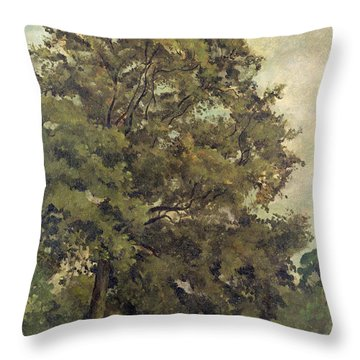 Study Of An Ash Tree Throw Pillow by Lionel Constable