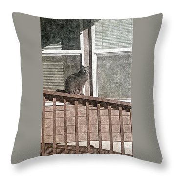 Study Of Lines With Cat Throw Pillow