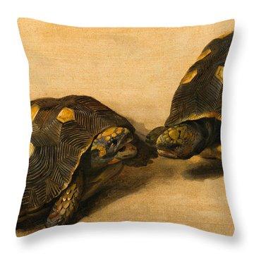 Study Of Two Brazilian Tortoises Throw Pillow