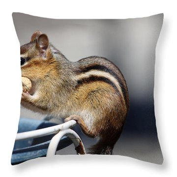 Stuff It In Throw Pillow by Karol Livote