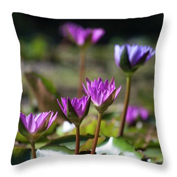 Throw Pillow featuring the photograph Stuff Of Dreams by Suzanne Gaff