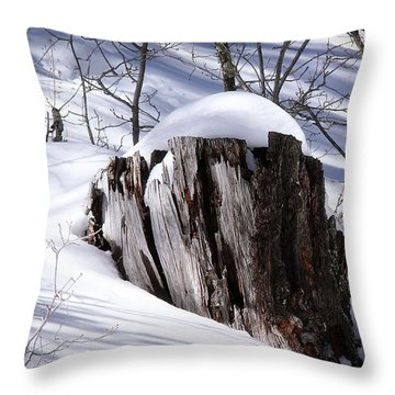 Stump Throw Pillow