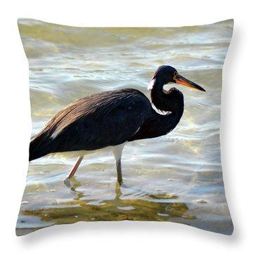 Throw Pillow featuring the pyrography Stump Pass Tri Colored Heron by Sally Sperry