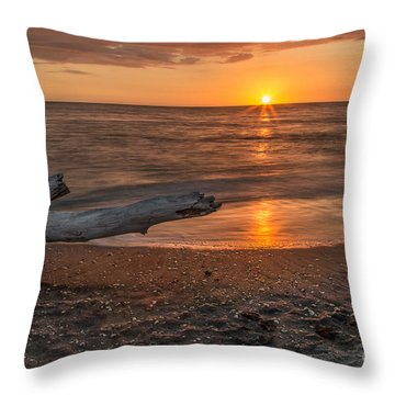 Stump Sunset Throw Pillow