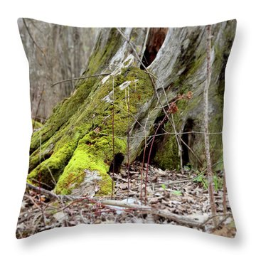 Stump With Moss Throw Pillow