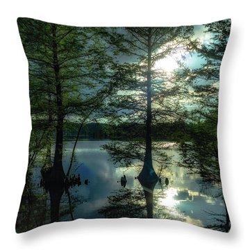 Stumpy Lake Throw Pillow