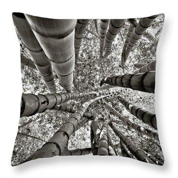 Stunning Bamboo Forest Throw Pillow
