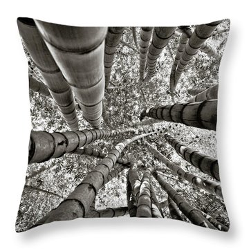 Stunning Bamboo Forest Throw Pillow