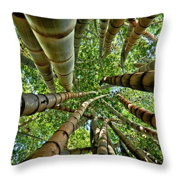 Stunning Bamboo Forest - Color Throw Pillow