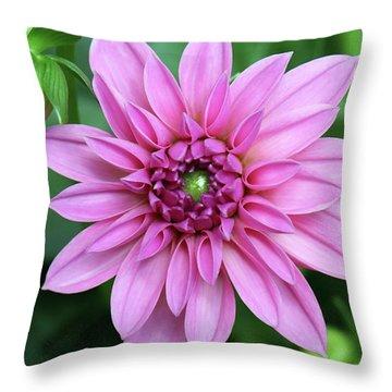Stunning Beauty Throw Pillow