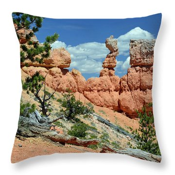 Throw Pillow featuring the photograph Stunning Bryce Canyon National Park Backcountry by Bruce Gourley