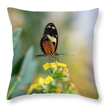 Stunning Butterfly Insect On Vibrant Yellow Flower Throw Pillow