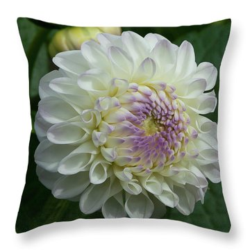 Stunning Gaylen Rose Dahlia Throw Pillow