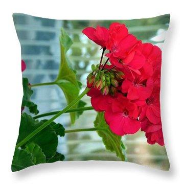 Stunning Red Geranium Throw Pillow