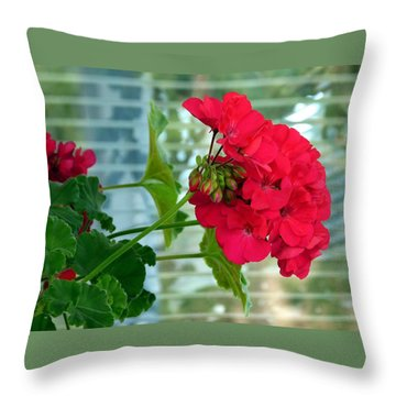 Stunning Red Geranium Throw Pillow by Will Borden